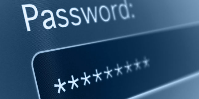 Eingabemaske einer Webseite. Text: Password