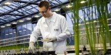 Agrartechnik bietet Jobs mit Zukunft
