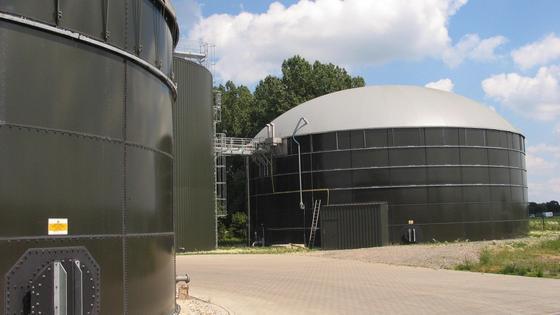 Biogas: Primär aus Mais erzeugt.