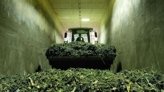 Bioabfälle können zur Energiegewinnung genutzt werden.