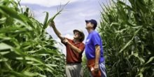 Digitale Landtechnik: Revolution ohne Volk