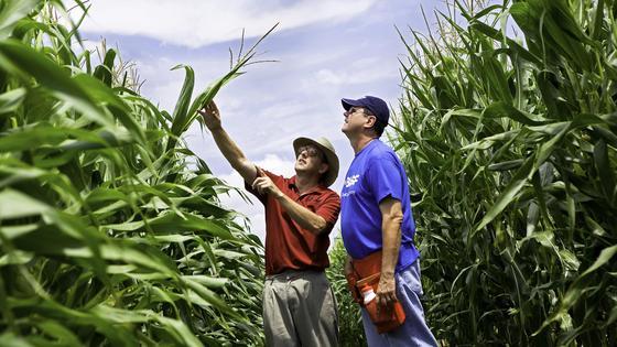 Hightech: Von Landwirten bisher verschmäht.