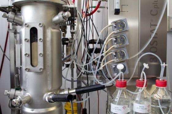 Bakterien produzieren in einem Inkubator der Firma AMSilk Spinnenproteine.