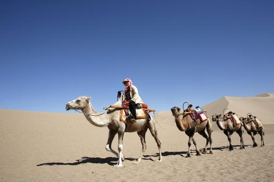 Durch Wüsten in China reiste auch Siegfried Link bei seinem Sabbatical-Trip. So oft es ging nutzte er bei seiner Reise das Mountainbike.