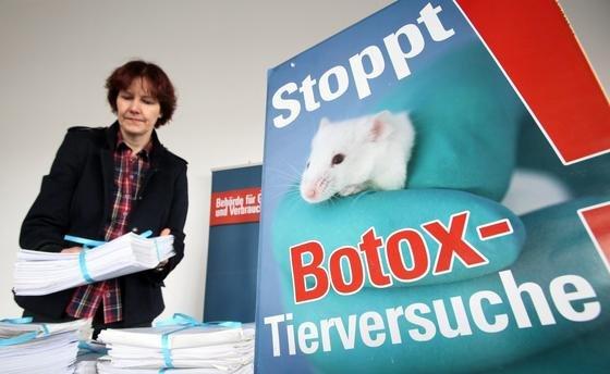 Ein Erfolg für Tierschützer: Seit dem 11. März sind in der EU Tierversuche für Kosmetika verboten.