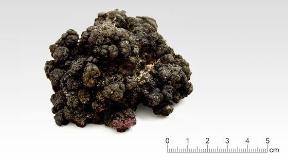Solche Manganknollen könnten künftig wertvolle Rohstoffe liefern. Diese Knolle stammt aus dem Pazifik, aus 4400 Metern Tiefe.