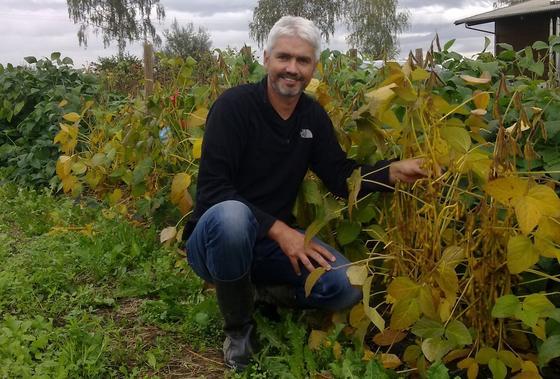 Der Agrartechniker Dr. Volker Hahn von der Universität Hohenheim arbeitet an Soja-Pflanzen, die besser ans deutsche Klima angepasst sind und höhere Ernteerträge versprechen.