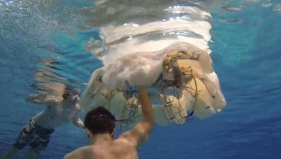 Roboterqualle Cyro auf Expeditionstour im Schwimmbecken.