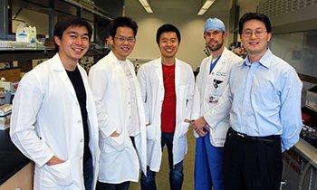 Ein Forscherteam der Universität von San Diego, bestehend aus (v.l.) Brian Luk, Che-Ming Jack Hu, Ronnie Fang, Jonathan Copp und Liangfang Zhang hat die Nano-Schwämme entwickelt, die Giftstoffe aus dem Blut schwemmen können.