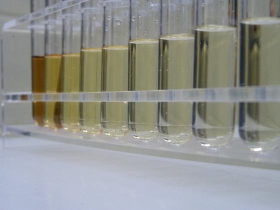 Sickerwasserproben: Fraunhofer-Forscher haben neue Verfahren zur Reinigung von Abwasser entwickelt.