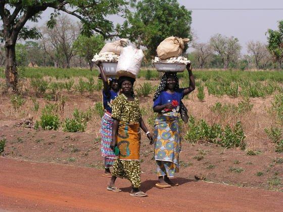 In Afrika fehlt es an fruchtbaren, humusreichen Böden, so eine neue Studie des Joint Reseach Centre der EU. Das Institut hat einen Bodenatlas entwickelt, der den Zustand der Böden auf dem gesamten Kontinent dokumentiert.