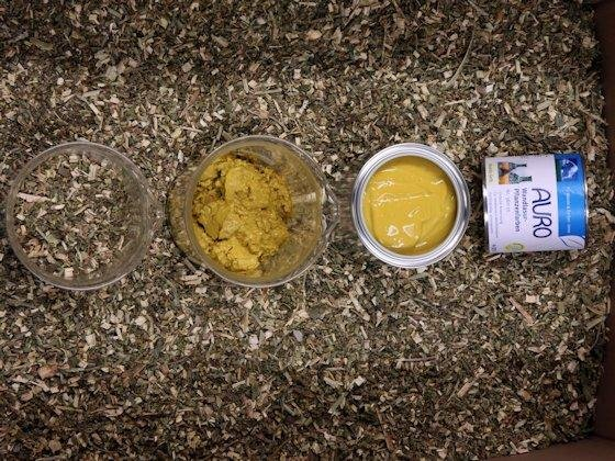 Von der alten Färbepflanze Reseda zur modernen Wandlasur: Der im Stängel enthaltene Farbstoff Luteolin färbt kräftig gelb.