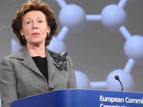 """<p>EU-Kommissarin Neelie Kroes: """"Wir dürfen den Anschluss an andere Hightechregionen nicht verlieren."""""""