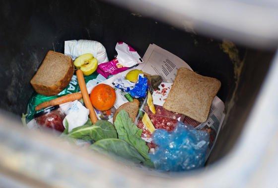Blick in die Mülltonne: Schon dabei lässt sich unschwer erkennen, dass zu viele Lebensmittel in der Tonne statt im Bauch landen.