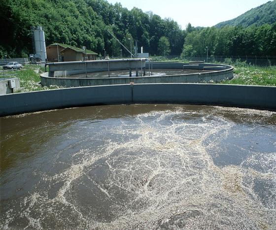 Moderne Kläranlagen haben Probleme mit Medikamentenrückständen, die über den Menschen ins Abwasser und später in die Flüsse geraten. Dort können sie die Fische schädigen.