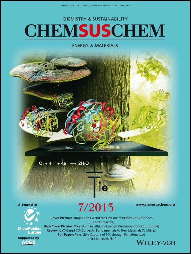 Freiburger Forscher haben entdeckt,dass Baumpilze die Lebensdauer vonBio-Brennstoffzellen entscheidendverlängern. Die Ergebnisse ihrerStudien haben Sie im FachmagazinChemSusChem veröffentlicht.