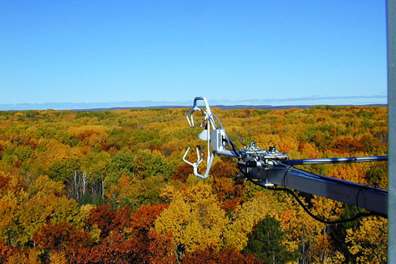 Ein internationales Forscherteam hat Langzeitmessungen des Stoffwechsels der Bäume in sieben Waldgebieten in den USA und 14 weiteren Wäldern auf der Nordhemisphäre durchgeführt. Darunter war auch ein Waldgebiet in Sachsen.