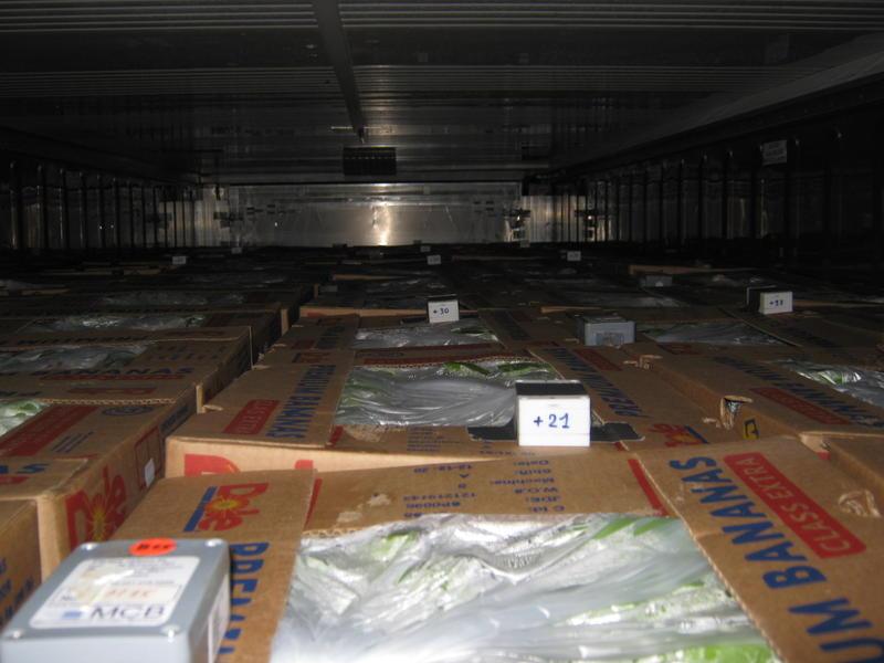 Zahlreichen Sensoren überwachen die Ware an allen Stellen im Container. Ein Bordcomputer errechnet die optimale Temperatur, damit die Ware mit dem gewünschten Reifegrad im Hafen ankommt.