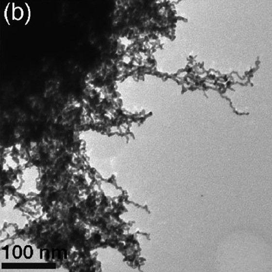 Elektronenmikroskopische Aufnahmen des Platin-Palladium-Aerogels (bei einem Verhältnis von 50 Prozent Platin und 50 Prozent Palladium).