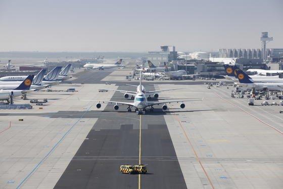 Besonders bei Start und Landung werden Rumpf und Tragflächen von Flugzeugen stark mit Insekten verschmutzt. Das beeinträchtigt besonders bei glatten Tragflächen die Aerodynamik.