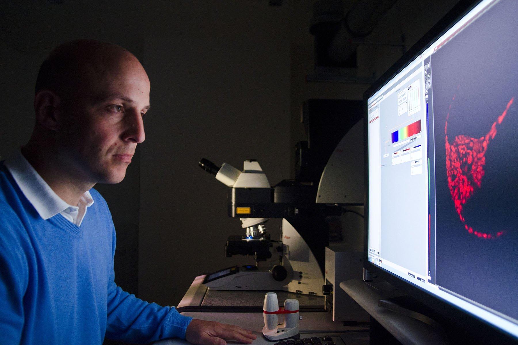 Forscher Jan Michels am Konfokalen Laserrastermikroskop.