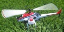 Unbemannte Flugzeuge besprühen Japans Reisfelder
