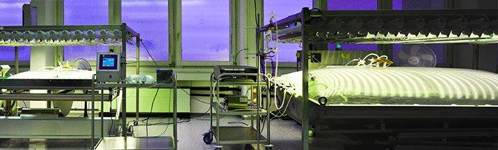 Im 500-Liter Moosbioreaktor bei greenovation werden komplexe Proteine für die pharmazeutische Industrie hergestellt.