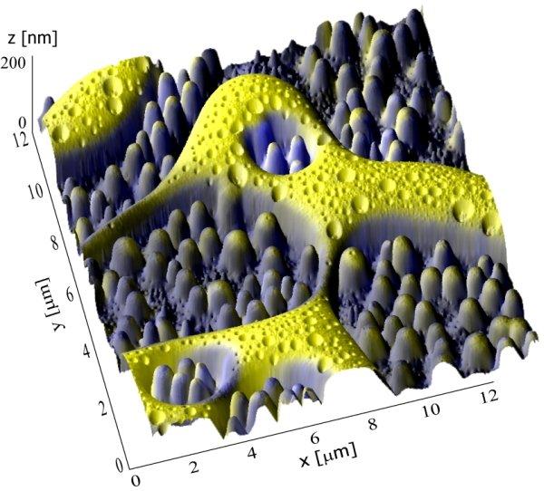 Gestochen scharf: Das 3D-NanoChemiscope bildet es die physikalischen und chemischen Materialoberflächen bis zur atomaren Stufe ab.