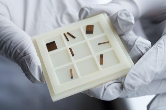 Laserchips ähnlich wie diese stellt Reithmaiers Forschungsgruppe an der Uni Kassel her. Jeder der Streifen auf diesen Chips ist ein Laser.