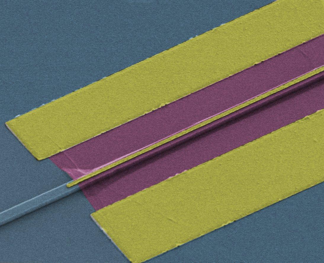 Durch einen dünnen Lichtwellenleiter (links) kommt das Signal, das im etwa 2 Mikrometer schmalen Graphen-Streifen in elektrischen Strom umgewandelt wird.
