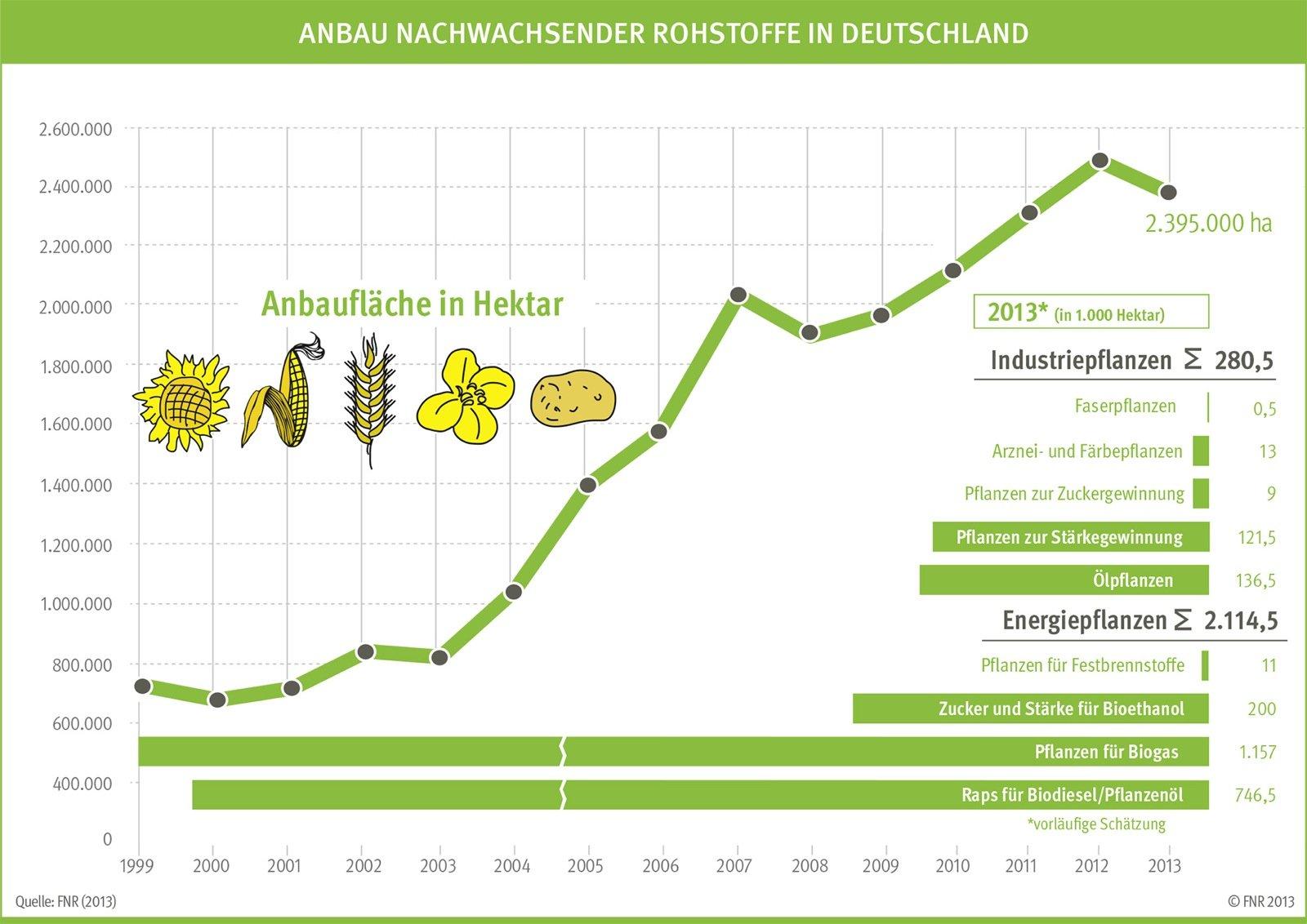 Auf 2,4 Millionen Hektar werden im Jahr 2013 Rohstoffpflanzen für die energetische und stoffliche Nutzung angebaut.
