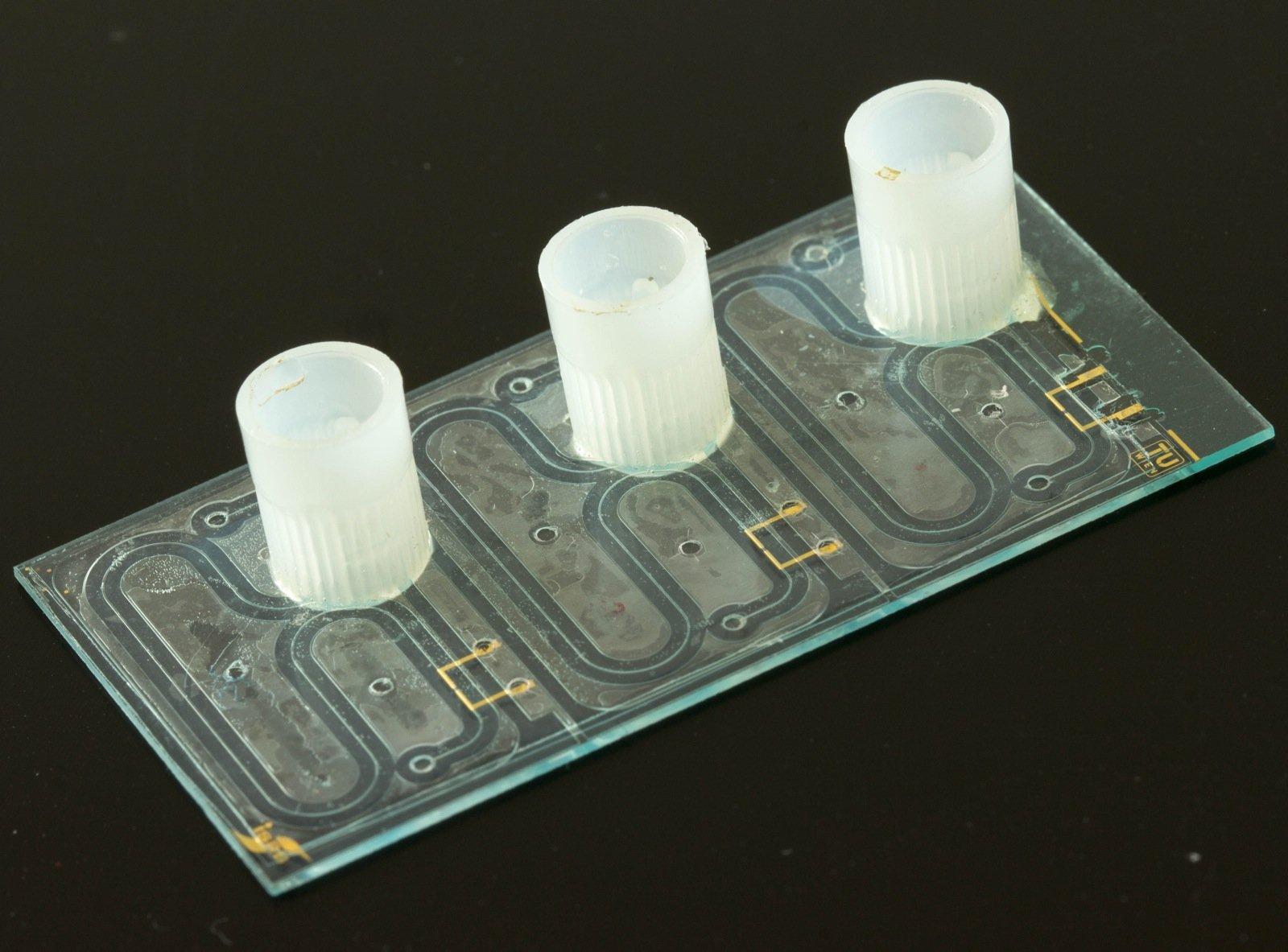 Eine Einheit von drei Chips zur Messung von NO3, NH4, K und PO4 (Chipgröße 16 mm x 26 mm).