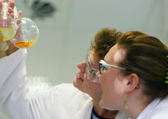In den 1970-er Jahren entwickelte das Aachener Pharma-Unternehmen Grünenthal im Labor das synthetische Schmerzmittel Tramadol, das jetzt Wissenschaftler überraschend in identischer Form in einer afrikanischen Pflanze wiedergefunden haben.