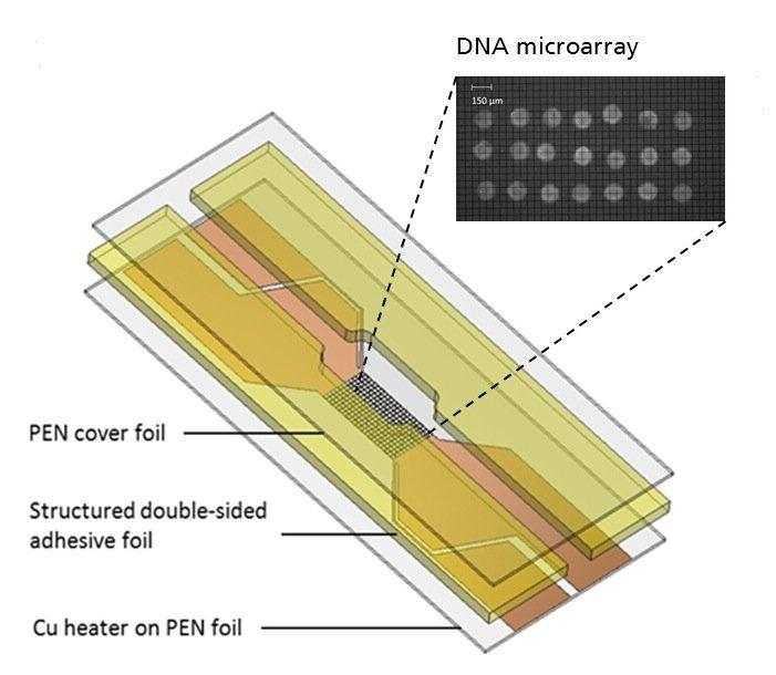 Aufbau der Einwegkartusche für die Schmelzkurvenanalyse auf Folie mit integrierten Heizelement: Diese Gerät, so klein wie eine Streichholzschachtel, soll künftig Krankheitserreger bestimmen.