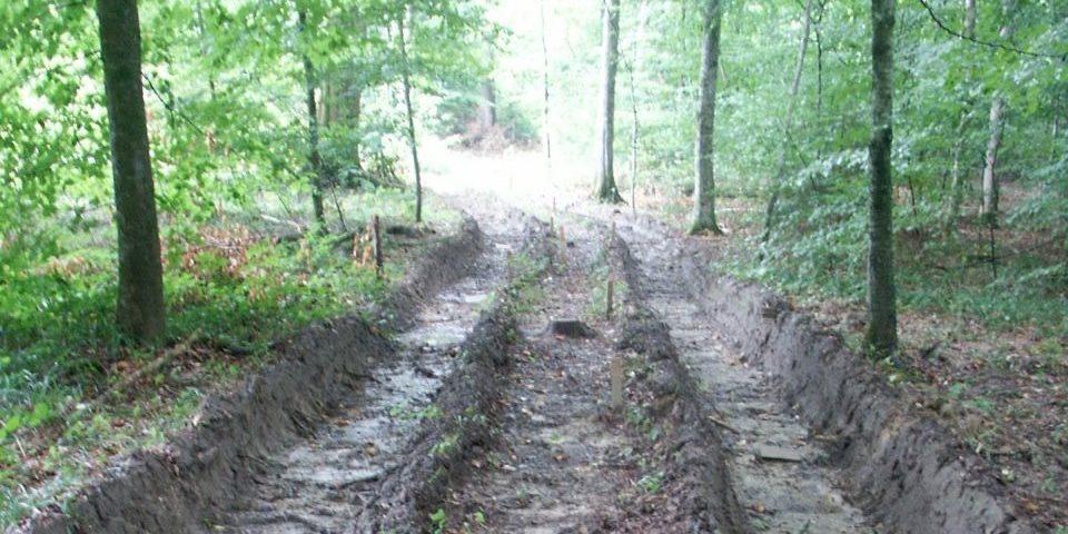 Waldboden mit tiefen Fahrspuren
