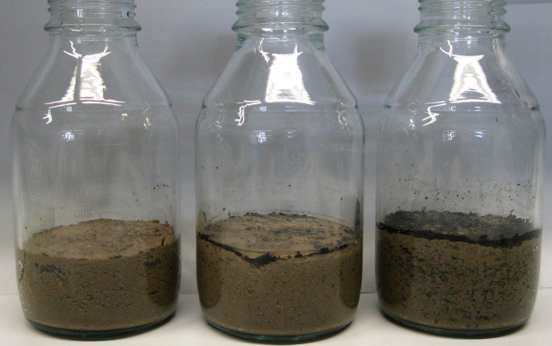 Der Laborversuch zur Lachgas-Freisetzung: ohne Kohle, mit zwei Prozent und mit zehn Prozent Pflanzenkohle.