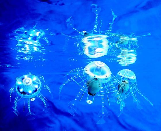 Der Automatisierungsspezialist Festo hat schon 2008 die ersten künstlichen Quallen entwickelt und laufend verbessert. Die neuste Version der Aquajellies können sich sogar selbstständig im Wasser organisieren und kommunizieren miteinander. Sie bilden sogar Schwärme wie richtige Quallen.