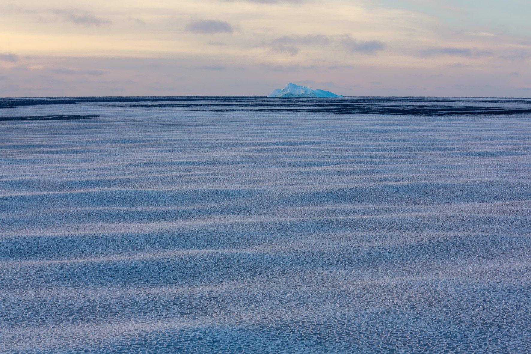 So genanntes Pfannkucheneis ist das erste Stadium sich bildenden Meereises. Noch deutlich zu sehen sind die Wellenbewegungen des Meeres unter der dünnen Eisschicht. Im Hintergrund der beeindruckenden Landschaft ist ein Eisberg zu sehen.