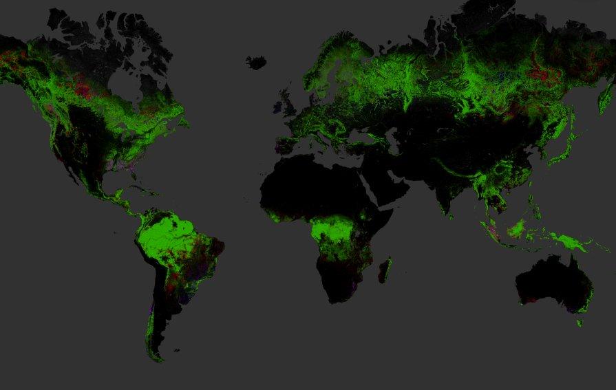 Roten Flächen auf der Google-Karte zeigen, wo Wald bereits verschwunden ist. Blaue Areale stehen für Aufforstung.