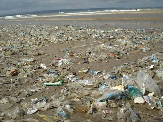 Plastikmüll verschmutzt nicht nur zunehmend die Meere. Jetzt sind mikroskopisch kleine Plastikkügelchen aus Kosmetikprodukten sogar im Honig aufgetaucht.
