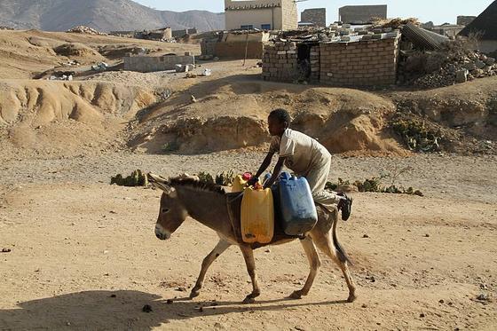 Junge holt Wasser mit einem Esel: Die Wasserarmut in Eritrea nimmt zu, die Wege zu Wasserstellen werden immer länger.