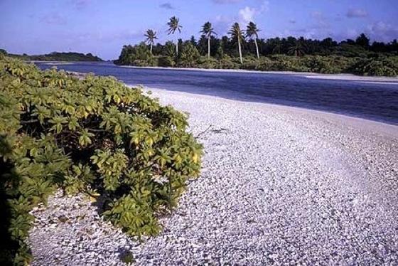 Trügerisches Paradies: Kiribati wird als Folge des Klimawandels im Meer versinken. Bereits heute ist das Trinkwasser an vielen Stellen ungenießbar.