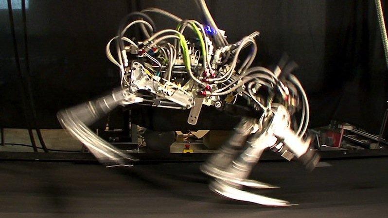 Cheetah ist der schnellste Roboter der Welt: Er läuft mit 45 km/h und ist somit schneller als Usain Bolt. Bislang allerdings nur auf dem Laufband. Als Antrieb kommt eine externe Hydraulikpumpe zum Einsatz.
