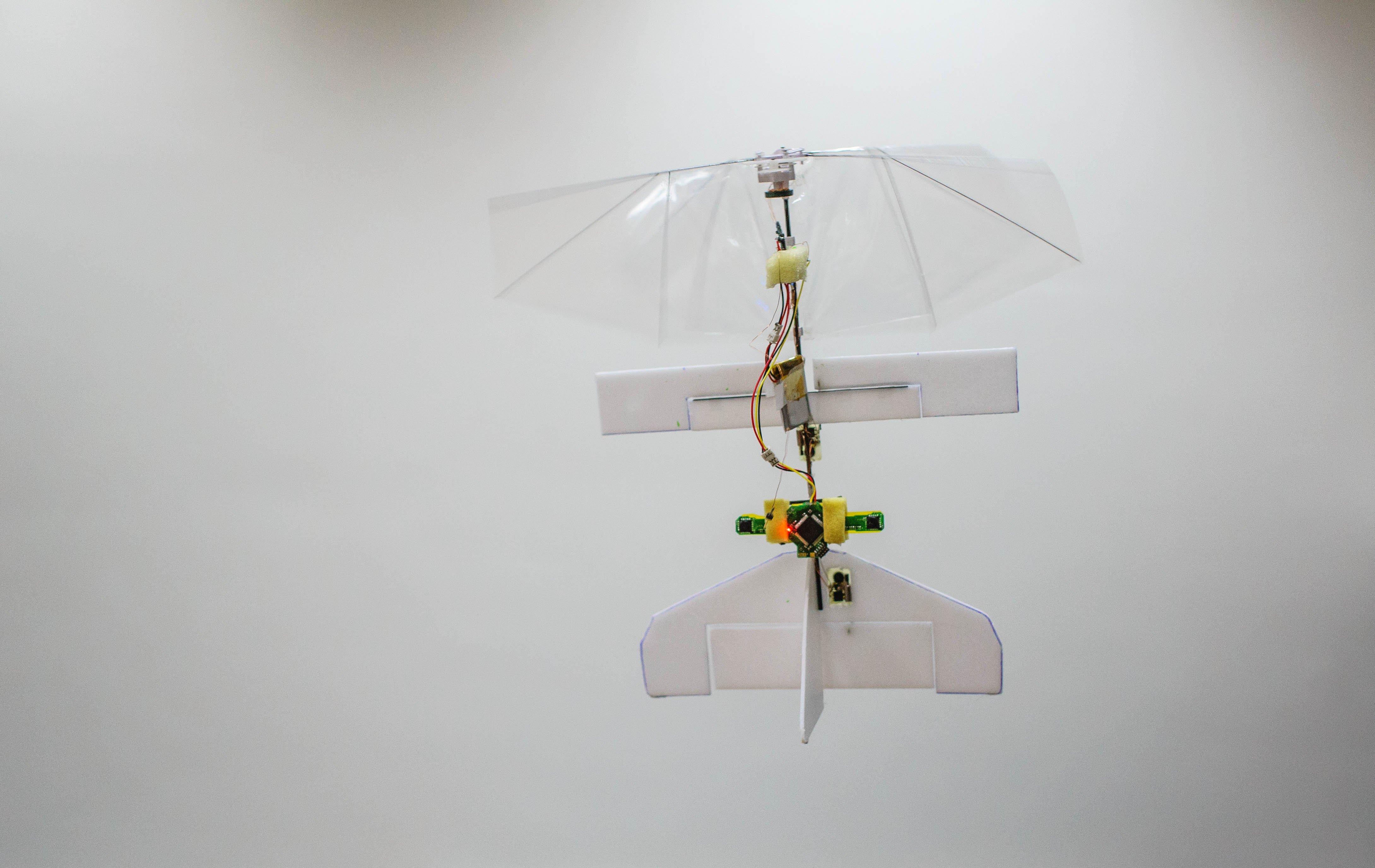 """Dank zweier Kameras kann die Minidrohne """"DelFly Explorer"""" selbstständig manövrieren. Die nur 20 Gramm leichte Drohne der TU Delft gleicht einer Libelle."""