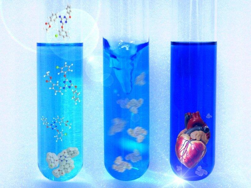 Chemische Wirkstoffe sollen künftig bei Regeneration von Herzmuskel-Gewebe helfen.