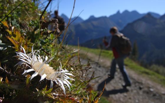 """Energiespeicher speziell für den Alpenraum werden im EU-Projekt """"AlpStore"""" gesucht."""