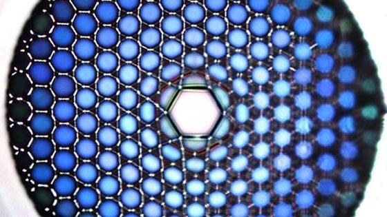 Mikroskopische Aufnahme der Glasfaser: Die Hohlkammer in der Mitte ist nur 20 Tausendstel Millimeter breit. Sie macht die verlustfreie Übertragung des UV-Laserlichts möglich.