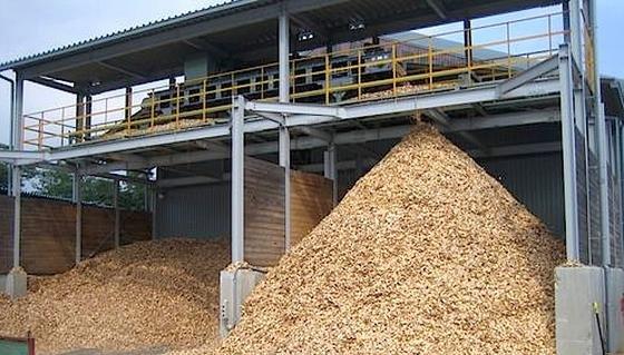 In Japan boomt die Stromerzeugung aus Biomasse, speziell aus Holz.