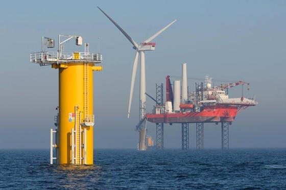 Der Windpark Sheringham Shoal vor der britischen Küste: Offenbar wirken die Fundamente der Windkraftanlagen im Meer wie künstliche Riffe und bieten neue Lebensräume. Deshalb gehen Robben und Seehunde besonders gerne in Windparks auf Jagd.