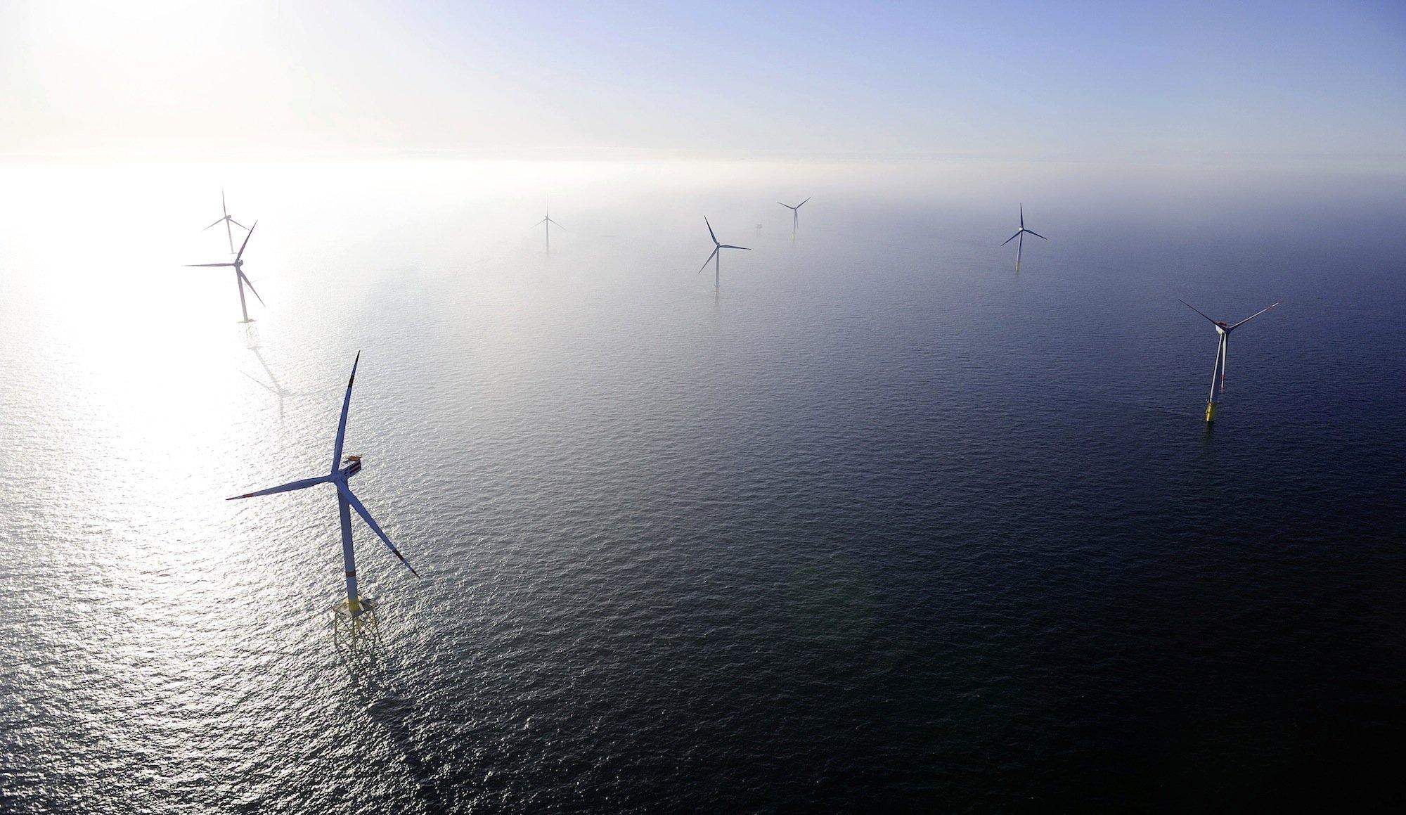 Der Windpark Alpha Ventus vor Borkum: Britische Forscher konnten dokumentieren, dass Robben und Seehunde besonders gerne im Umfeld von Offshore-Windkraftanlagen auf Jagd gehen.